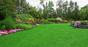 Different Kinds of Lawn and Garden Ornaments