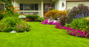 Finding the Right Lawn Service and Landscaping Company