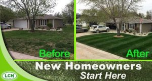How-to Fix Your Ugly Lawn With This Single Lawn Application